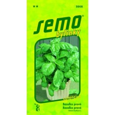 Bazalka pravá - Lettuce leaf, 1 g - sleva expirace 12/2019
