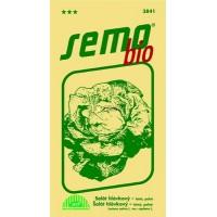 Salát hlávkový jarní Král máje  - BIO osivo - 0,6g