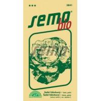 Salát hlávkový letní Smeraldo 2  - BIO osivo - 0,6g