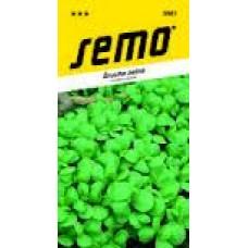 Šrucha  zelná Green purslane - 0,4g